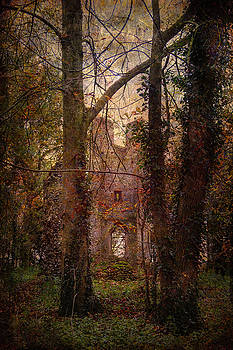 Woodland Church Ruins by Martin Fry