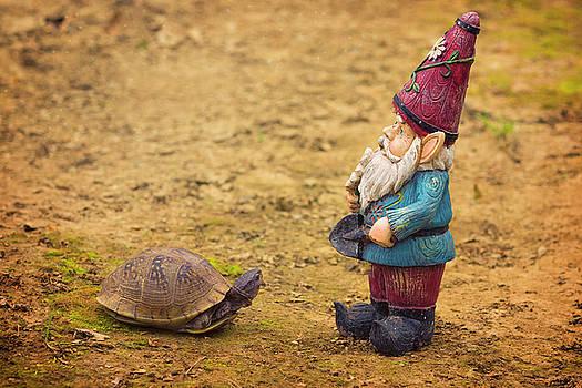 Woodland Creatures by Linda Tiepelman