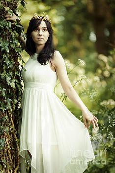 Woodland Fairytale by Amanda Elwell