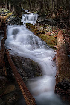 Woodland Falls 2017 by Bill Wakeley