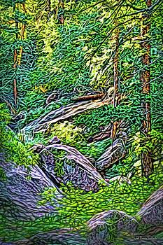 Woodland Grace by Joel Bruce Wallach
