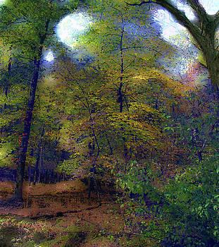 Woodland In Autumn by Cedric Hampton
