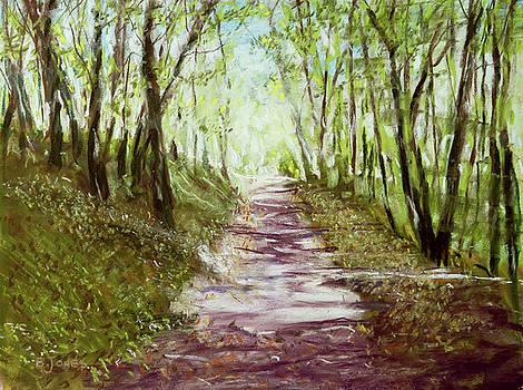 Woodland Path - Impressionism Landscape by Barry Jones
