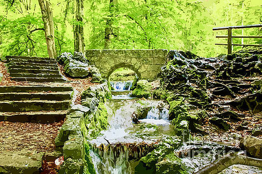 Woodland Steps and Stream by Clive Littin