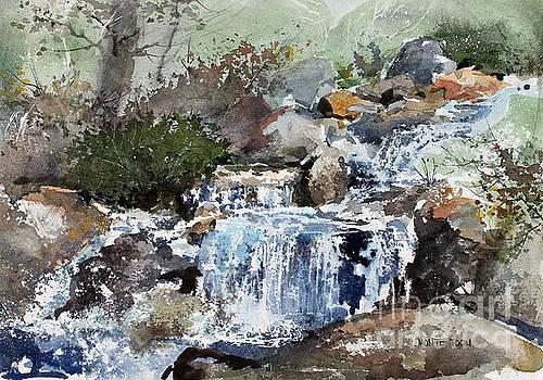 Woodland Stream by Monte Toon