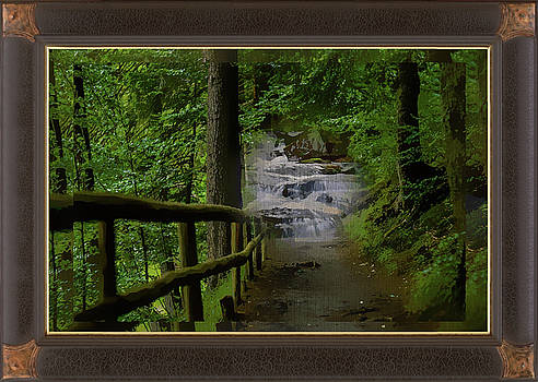 Woodland Waterfall Montage by Clive Littin