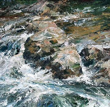 Woodland Waterway by Jim Gola