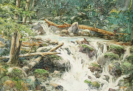 Woodlands Stream by Thomas Sorrell