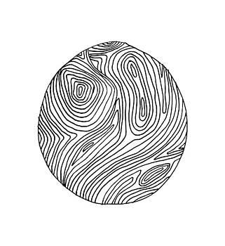 Woodprint 3 by Cortney Herron