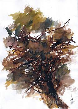 Woods 1 by Subhashis Ghosh