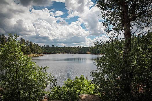 Rosemary Woods-Desert Rose Images - Woods Canyon Lake, AZ-IMG__6971-2016