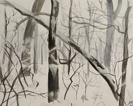 Woods in Snow by Marty Smith