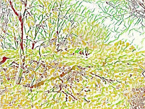 Woods by Ivan Gomez