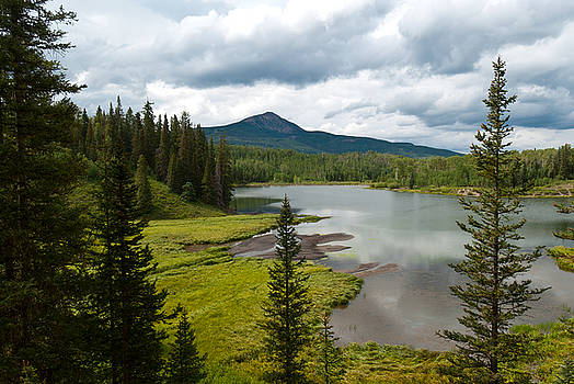 Wood's Lake Summer Landscape by Cascade Colors