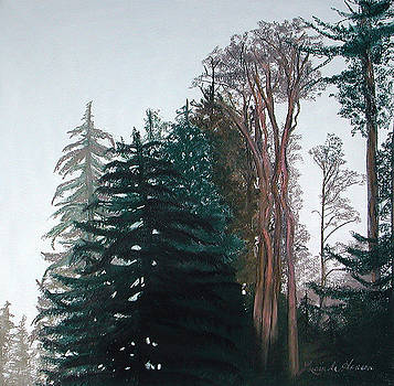 Woods Mist by Lucinda  Hansen