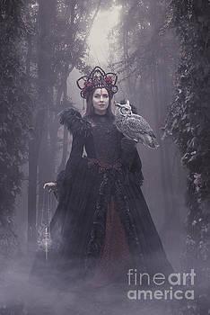 Woods of Wisdom by Babette Van den Berg