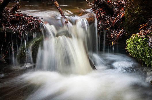 Jenny Rainbow - Woods Spring