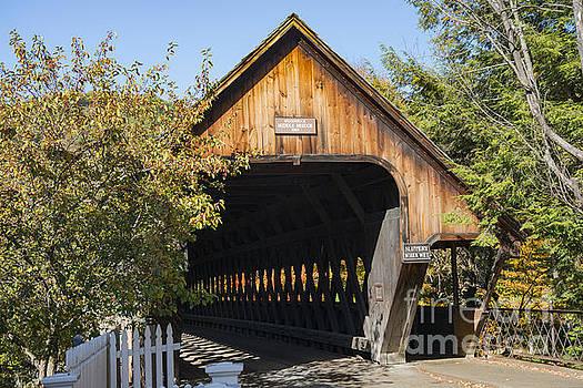 Bob Phillips - Woodstock Middle Bridge Entrance