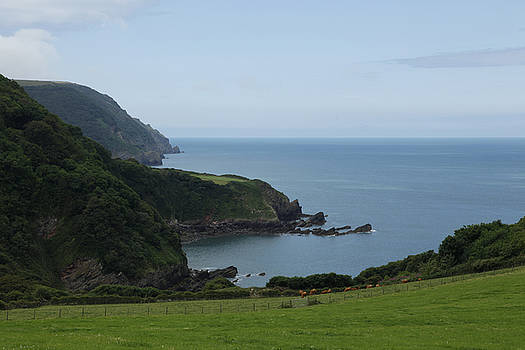 Woody Bay, North Devon by Mike Finding