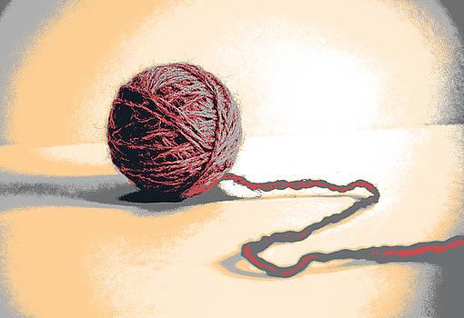 Wool by Shay Culligan