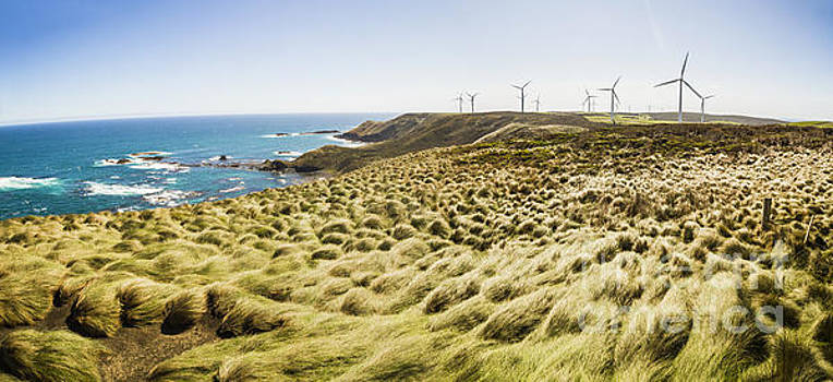 Woolnorth wind farm and ocean landscape tasmania by Jorgo Photography - Wall Art Gallery