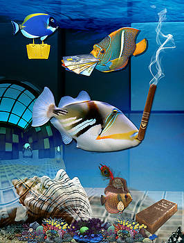 Order, Order, Order, Going Shopping Saltwater Triggerfish by Marvin Blaine