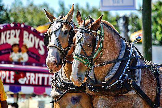 Edward Sobuta - Work Horses