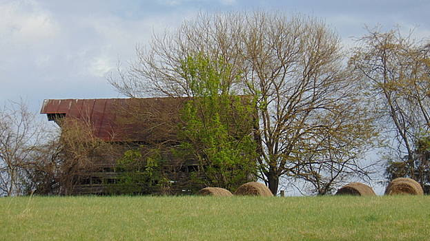 Working Barn by Charlotte Gray