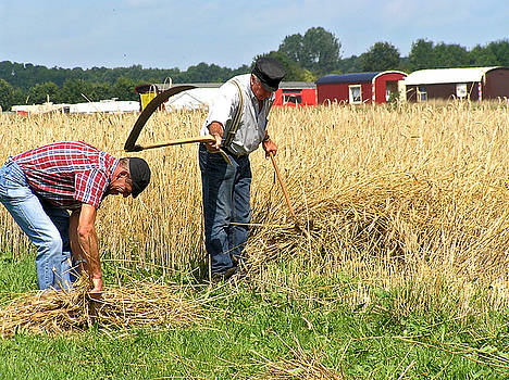 Working on the Land by John Vriesekolk