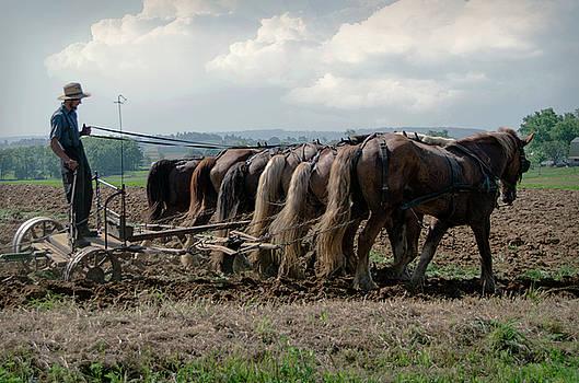 Eleanor Bortnick - Working the Fields