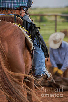 Working The Rope by Terri Cage