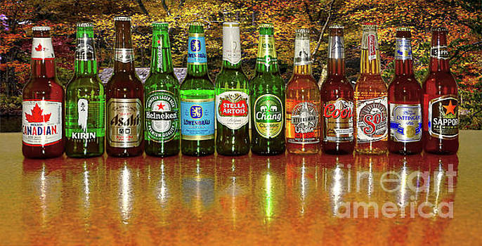 World Beers by Kaye Menner by Kaye Menner
