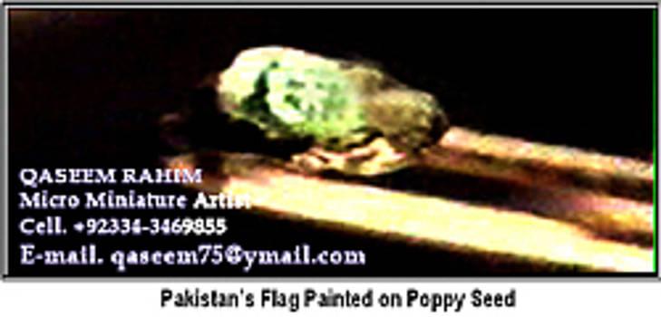 World Smallist Flag On Poppy Seed by Qaseem Ur- Rahim