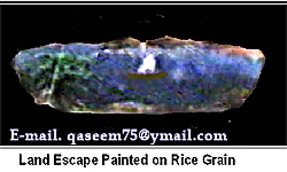 World Smallist Land Scape On Rice Grain by Qaseem Ur- Rahim