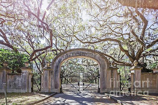 Wormsloe Gate by Joan McCool