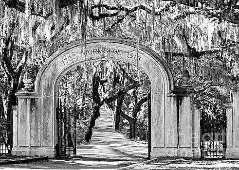 Diann Fisher - Wormsloe Georgia No. 7611 BW Gateway