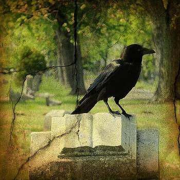 Gothicrow Images - Written In Stone