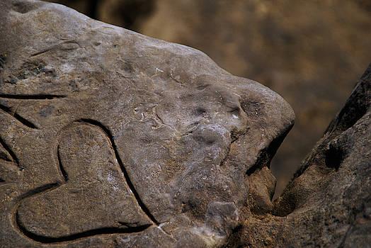 Linda Shafer - Written In Stone
