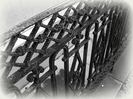 Wrought Iron Fence by Beth Vincent