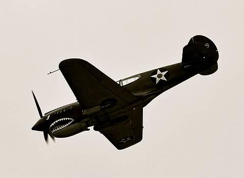 WW II Flying Tiger Airplane  by Amy McDaniel