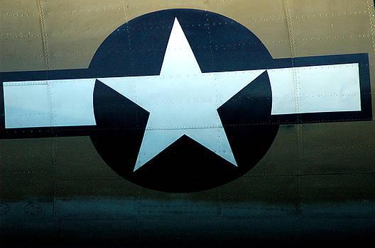 WW2 Navy Aircraft Insignia by David Weeks