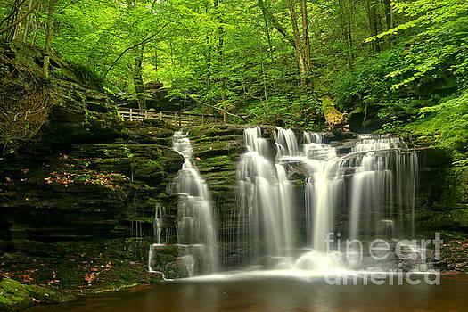 Adam Jewell - Wyandot Falls In The Forest