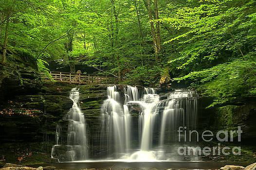 Adam Jewell - Wyandot Falls Reflections
