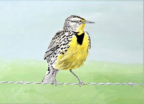 Wyoming Meadowlark by Anne Hockenberry