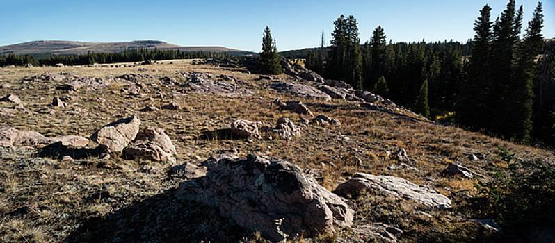 Wyoming Mountain Vista by Steve Gadomski