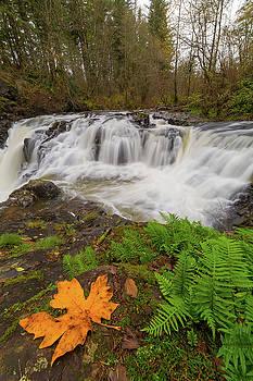 Yacolt Creek Falls in Fall Season by David Gn