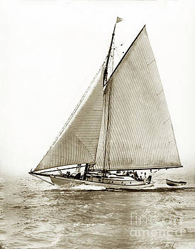 California Views Mr Pat Hathaway Archives -  Yankee a   52-footer wooden schooner she was  at William F. Stone