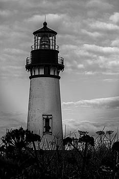 Yaquina Head Lighthouse by David Millenheft