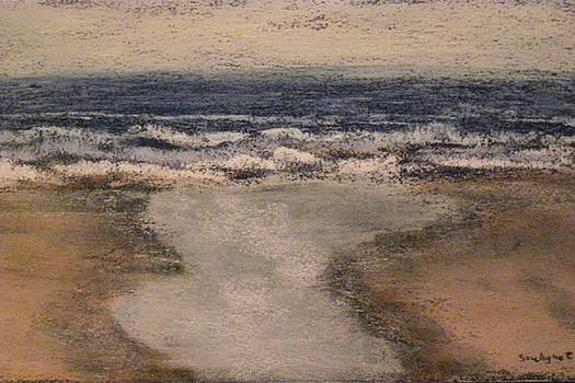 Yaquina Head South Beach by  Joseph Soulagnet