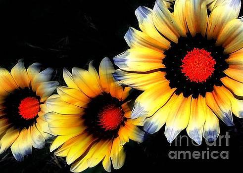 Jenny Revitz Soper - Yard Flowers